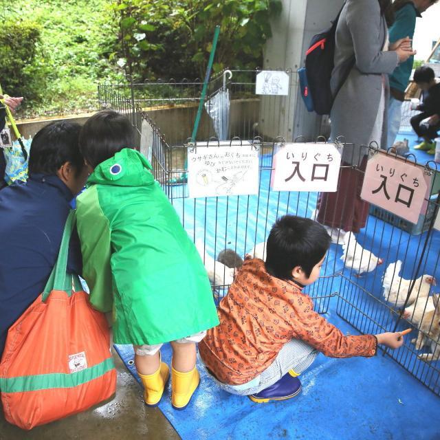 東京純心大学 聖母祭&入試相談会を開催します!3