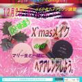 マリールイズ美容専門学校 12/2(日)マリールイズで美のイベントに参加しよう!