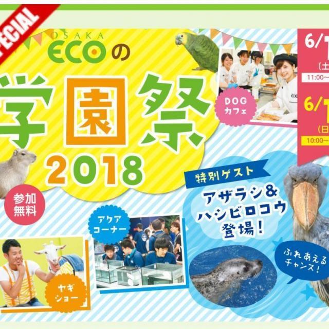 大阪ECO動物海洋専門学校 大阪ECO 学園祭2018 【 6月16日・17日限定 】 1