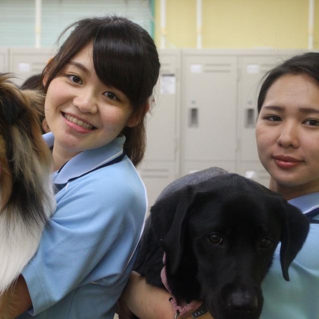 国際動物専門学校 学科別体験入学4