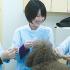 名古屋ECO動物海洋専門学校 【動物看護師】3