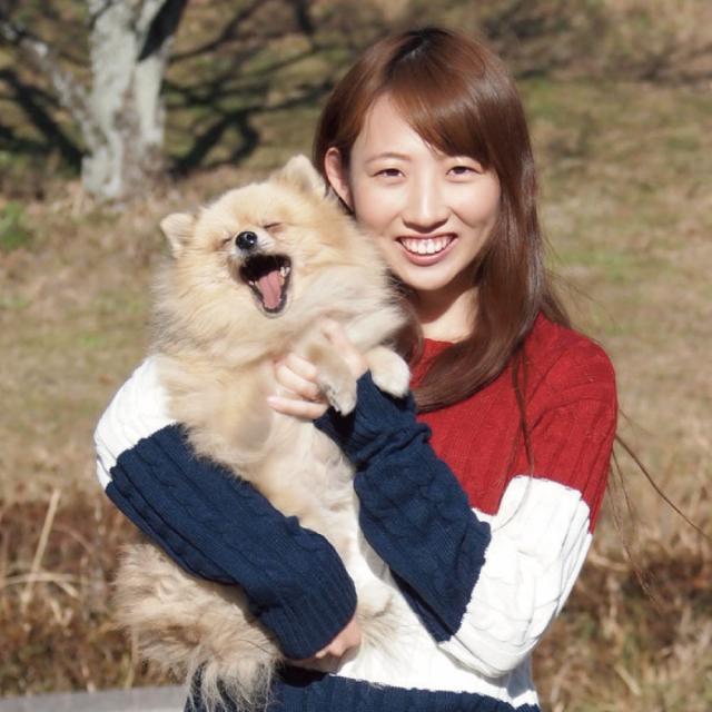 愛知ペット専門学校 わんちゃんをキレイに!体験3