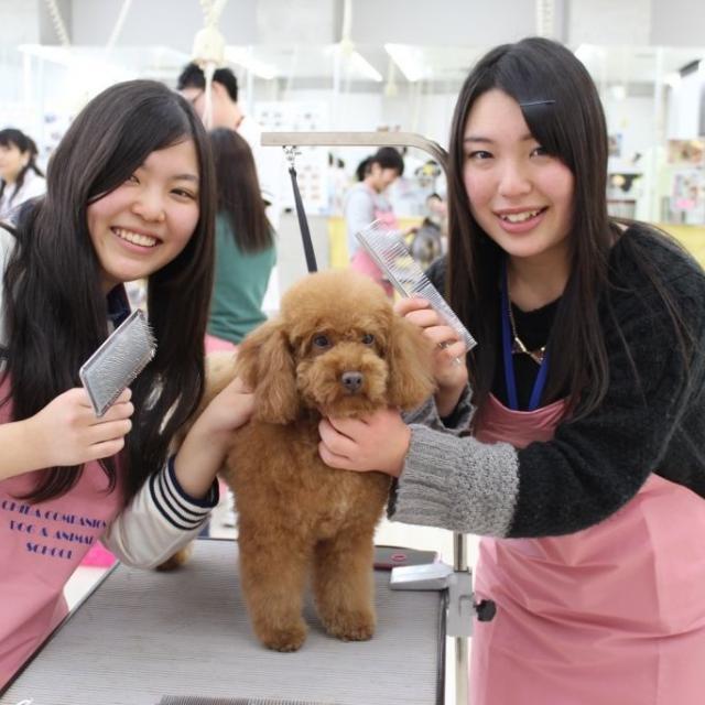 専門学校ちば愛犬動物フラワー学園 8/7(火)コース別オープンキャンパス1