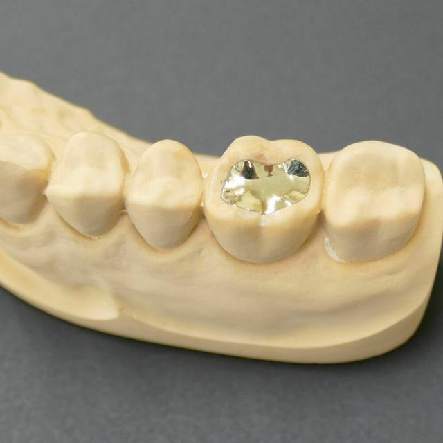 東邦歯科医療専門学校 歯科技工士学科 【本格体験】歯への詰め物をつくってみよう!1