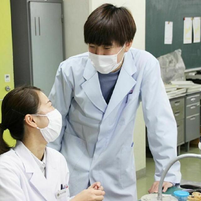 東邦歯科医療専門学校 歯科技工士学科 【本格体験】白い歯を並べてみよう!3