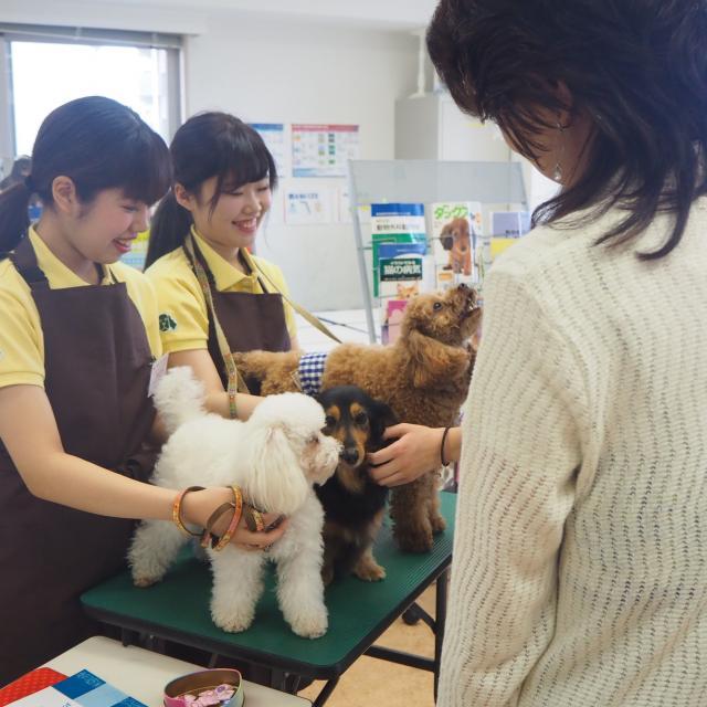 国際動物専門学校 学校説明会2