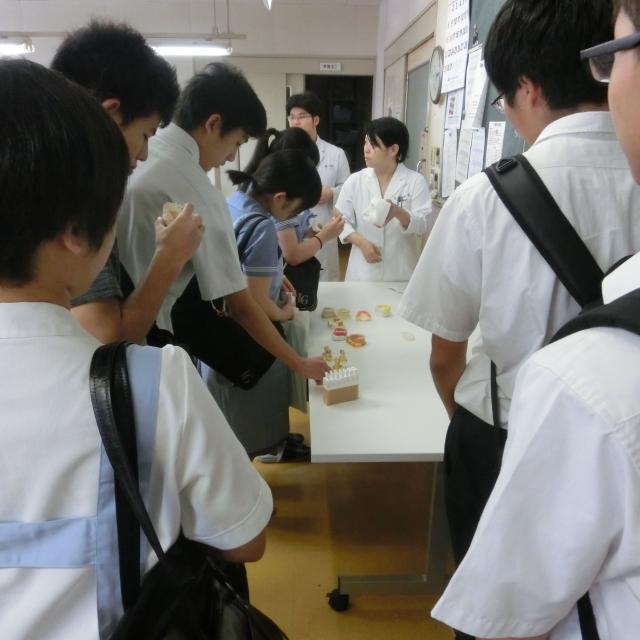 熊本歯科技術専門学校 「歯科技工士」の仕事を体験してみよう!4