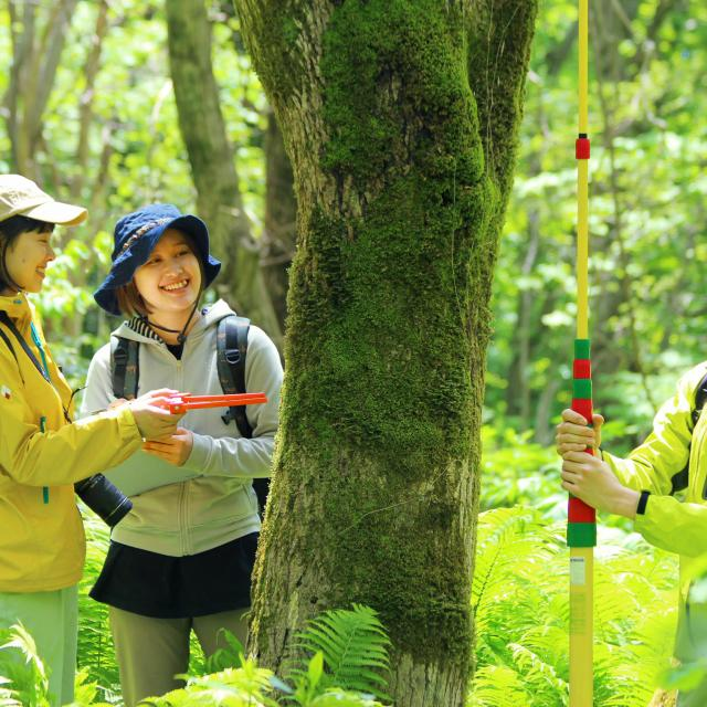 日本自然環境専門学校 森林の中で働きたい!森を守りたい!2