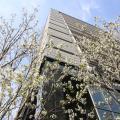 日本大学 【経済学部】2020オープンキャンパス