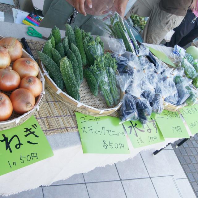 新潟農業・バイオ専門学校 農業ビジネス!販売テクニックを学ぼう!1