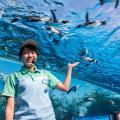 GWスペシャル!サンシャイン水族館へおでかけツアー!