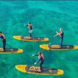 オープンキャンパス:海洋リハビリテーション学科の詳細