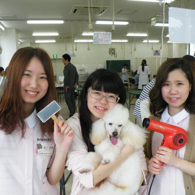 愛犬美容看護専門学校 半日オープンキャンパス☆時間のない方もお気軽に体験できます♪1