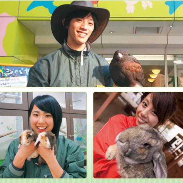 名古屋ECO動物海洋専門学校 【動物園・動物飼育】1