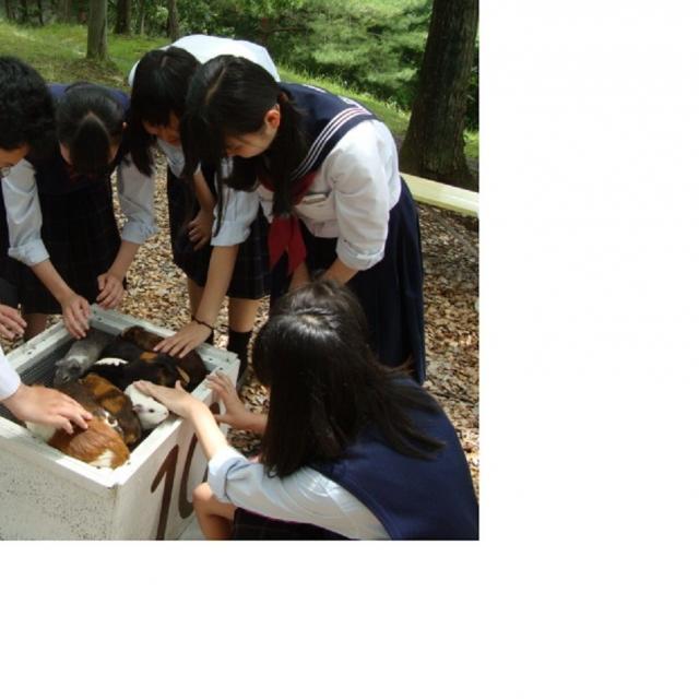 山村学園短期大学 やまたんの自然と移動動物園1