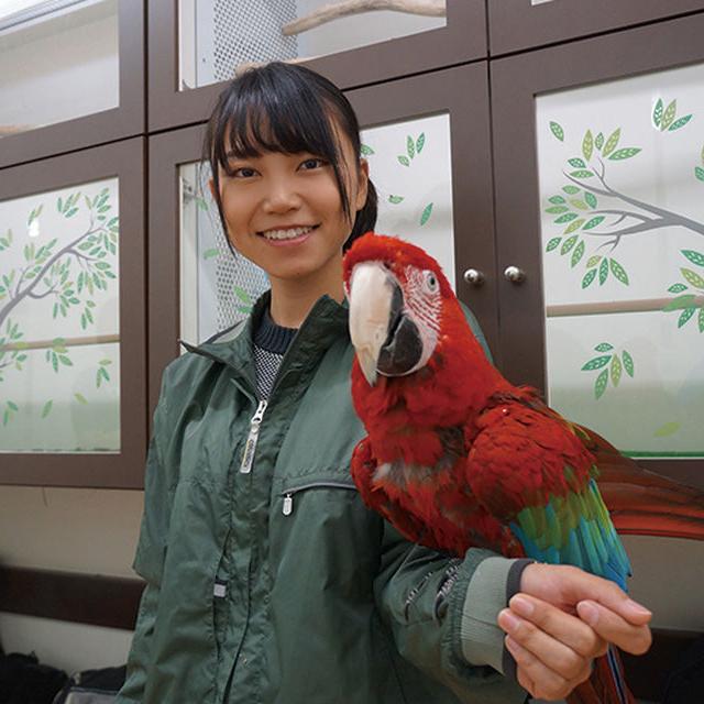 名古屋ECO動物海洋専門学校 【動物園・動物飼育】3