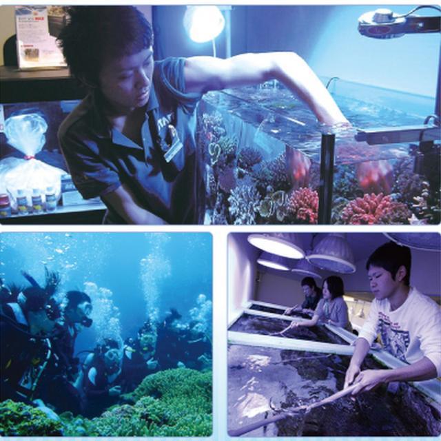 名古屋ECO動物海洋専門学校 【水族館アクアリスト】1