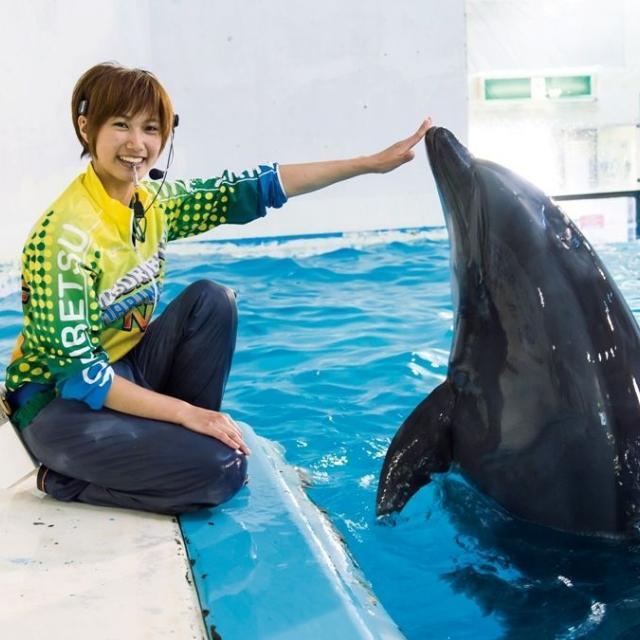 仙台ECO動物海洋専門学校 ドルフィントレーナーのお仕事体験1