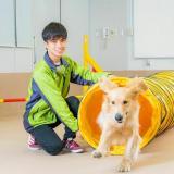 【ドッグトレーナー・ペットビジネス学科】の詳細