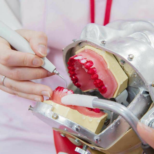 新東京歯科衛生士学校 【人数限定】歯科衛生士の仕事がわかる!歯石取り体験2