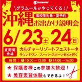 沖縄お出かけ説明会開催!の詳細