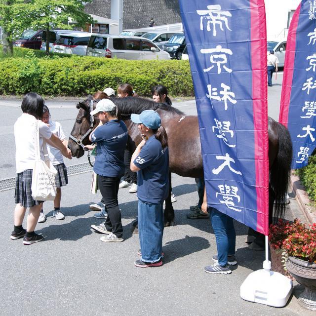 帝京科学大学 オープンキャンパス #東京西キャンパス2