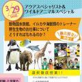 ★春スペシャル★徹底授業!動物園、水族館、野生動物の職業/神戸動植物環境専門学校