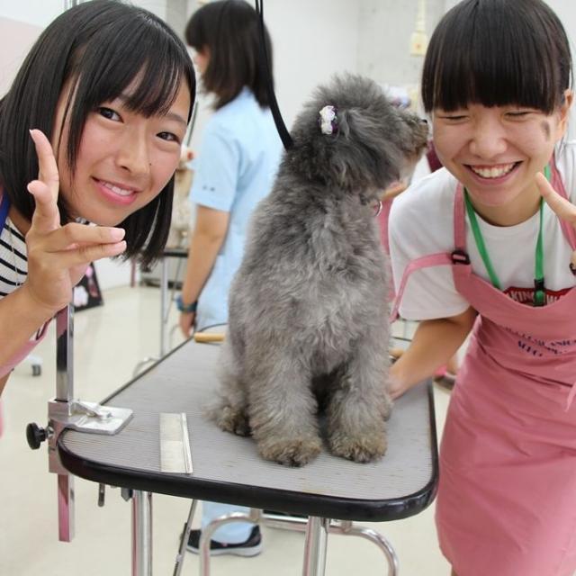 専門学校ちば愛犬動物フラワー学園 6/24オープンキャンパス~カイくん来校♪~3