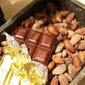 専門学校ビジョナリーアーツ 9/24(月)カカオ豆からチョコレートを作ろう!