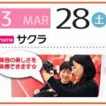 小出美容専門学校 「サクラ」がイベントテーマです!【大阪校】