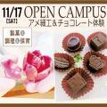 にいがた食育・保育専門学校えぷろん アメ細工&チョコレート体験!!