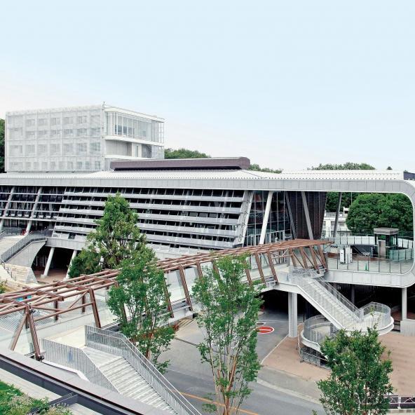 合格 大東 文化 発表 大学