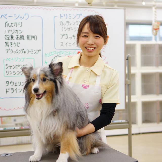神戸動植物環境専門学校 【A:トリマー★体験】大好きなワンちゃんをキレイにかわいく♪1