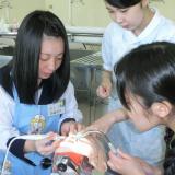 【ミニコース!】3月23日14:00~スタート!2年生向け体験入学の詳細