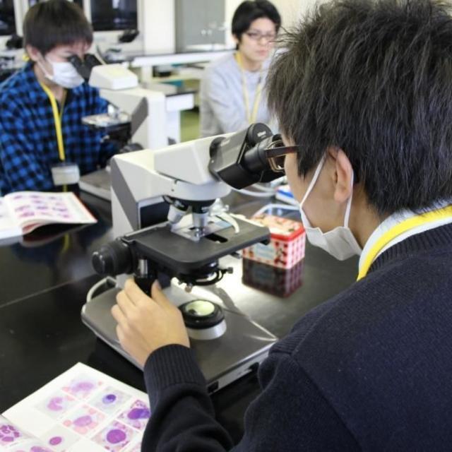 日本医療学院専門学校 【夏季限定企画!】職業理解を深めよう!職業体験フェア☆1
