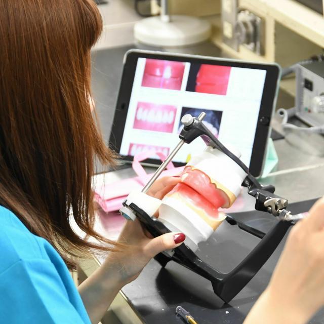 東邦歯科医療専門学校 歯科技工士学科 【本格体験】白い歯を並べてみよう!2