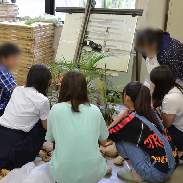 日本ガーデンデザイン専門学校 フラワーショップのディスプレイ方法を学ぶ4