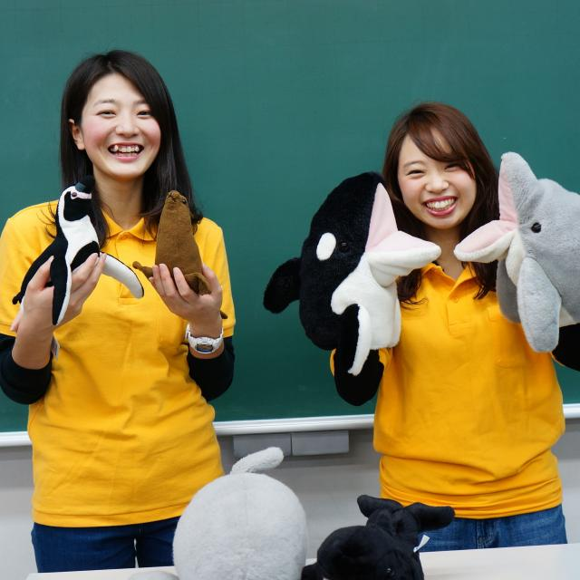 神戸動植物環境専門学校 【Fコース イルカ(海獣)トレーナー★体験】ショーや訓練♪1