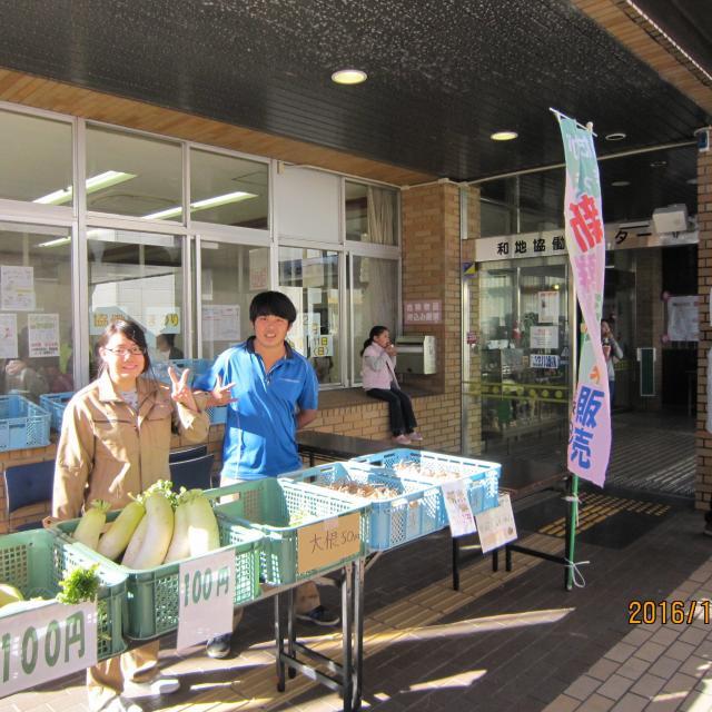 冬野菜の収穫体験♪ができるオープンキャンパス
