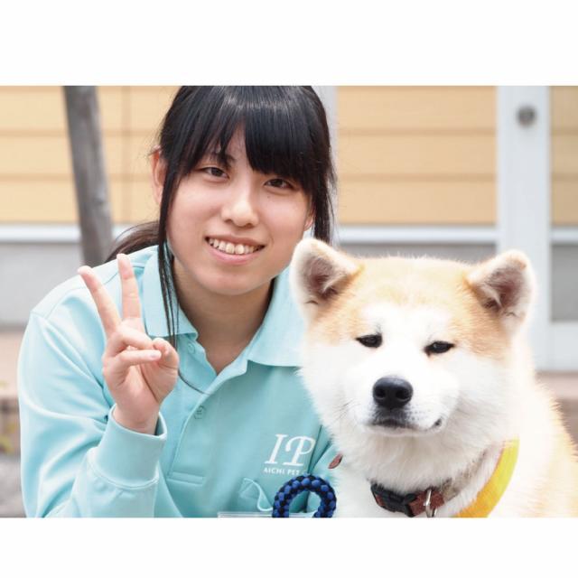 愛知ペット専門学校 わんちゃんをキレイに!体験4