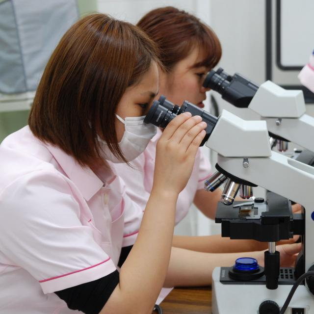 京都動物専門学校 動物看護師になりたい人のための体験入学会!!1