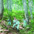 日本自然環境専門学校 森林の中で働きたい!森を守りたい!