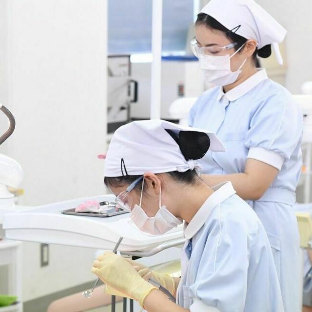 東邦歯科医療専門学校 歯科衛生士学科【午後の部】治療の一部(仮封)を体験してみよう!1