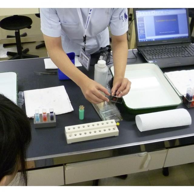 顕微鏡で血液を見てみよう☆学校見学会