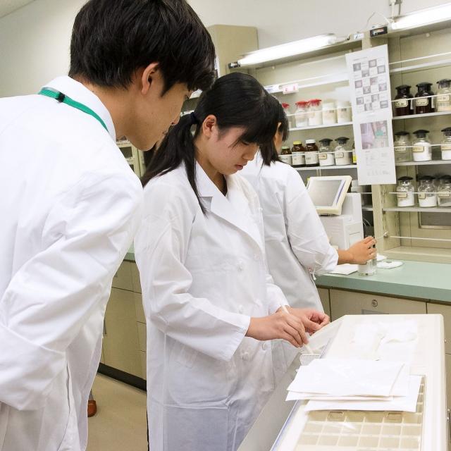明治薬科大学 7/29(日)薬学体験実習について(オープンキャンパス)1