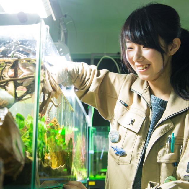 北海道エコ・動物自然専門学校 全道より無料送迎バス!150種の動物たちと出会える飼育体験!2