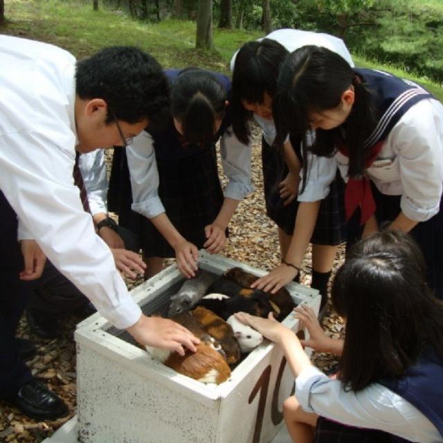 山村学園短期大学 やまたんのAO入試を知ろう・エントリーシートの書き方3
