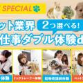 大阪ビジネスカレッジ専門学校 ペット業界お仕事ダブル体験DAY!開催★