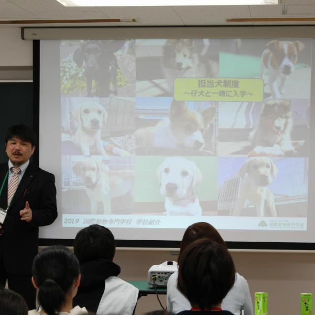 国際動物専門学校 学校紹介1