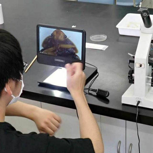 日本自然環境専門学校 土の中の不思議な生き物たち1